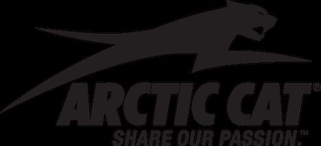 Arctic Cat 60